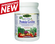 PROTEINA VEGETAL ORAC ENERGY PROTEIN & GREENS SUPERFOOD 454 GR